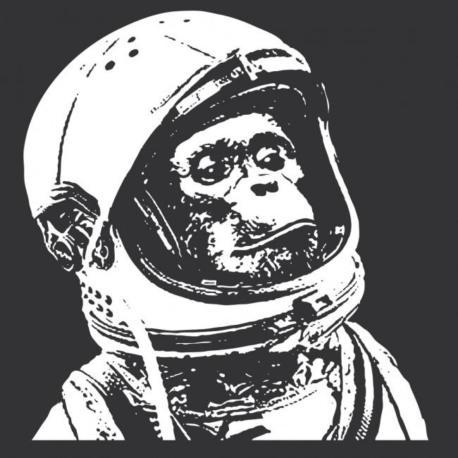 Monkey Maser