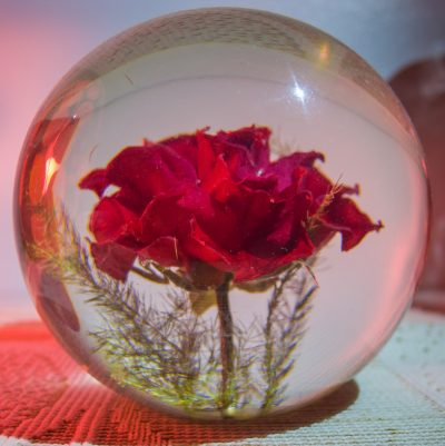 The Resin Rose